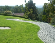 paths in garden 009