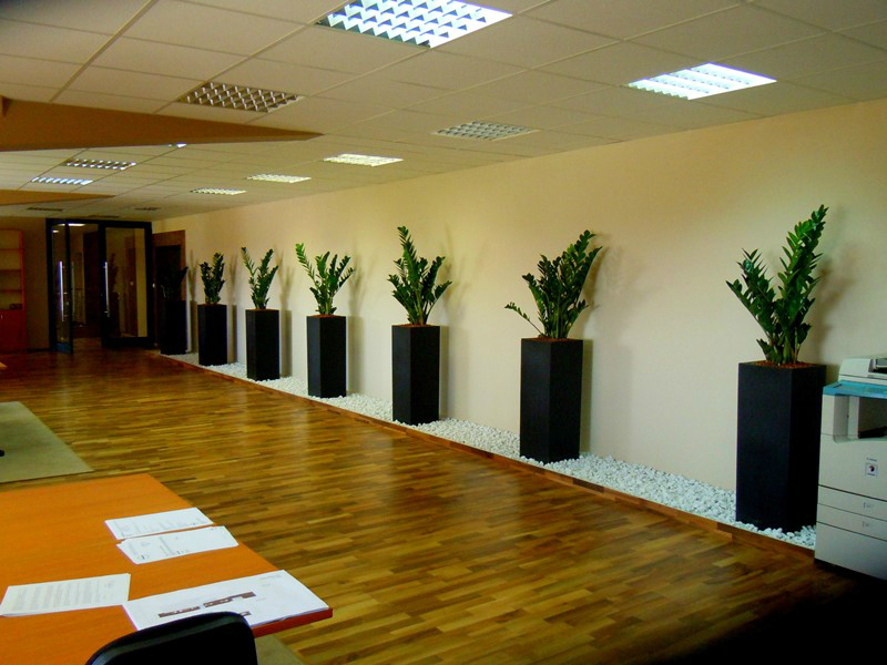 interior landscaping office. Creative Interior 004 Landscaping Office E